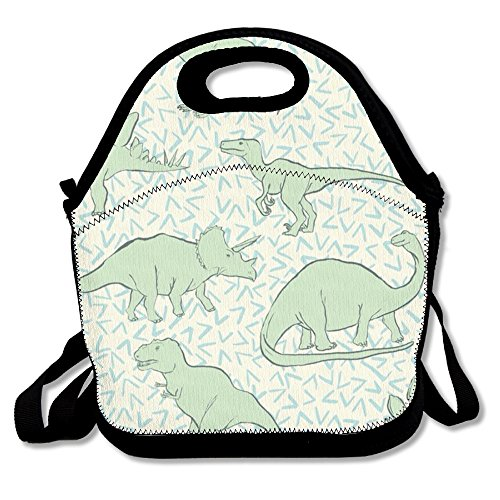 Dinosaur Lunch Bag Portable Picnic Lunch Tote Bag Reusable Lunch Bags Boxes Awesome Lunch Handbag For School Work Outdoor