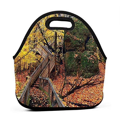 for Womens Mens Boys Girls WoodlandScenic Autumn Landscapehot cold lunch bag for men
