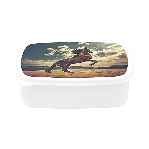 Childrens Lunch BoxRunning Horse BPA-free Plastic Kids Food Container