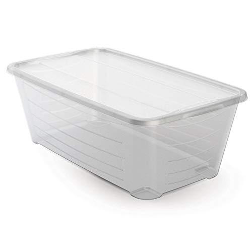 Life Story 6-Quart Rectangular Clear Plastic Shoe Box 12 Pack