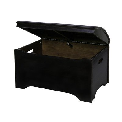 Little Colorado Solid Wood Toy Storage Chest -