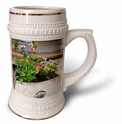3dRose Danita Delimont - Garden - Spring garden display in containers in old wooden drawer - 22oz Stein Mug stn_251039_1