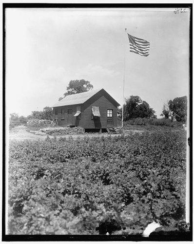 HistoricalFindings Photo National Emergency Food GardenWorld War IWWIUnidentified Locationc19152