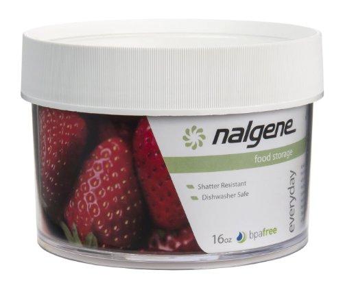 Nalgene Kitchen Storage Jar 16-Ounce Clear