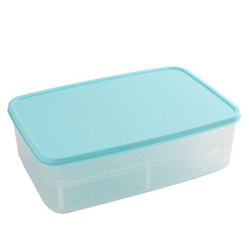DealMux Plastic Kitchen Freezer Microwave Food Storage Box Container Blue