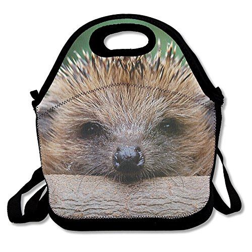 Cute Animal Hedgehog Insulated Lunch Bag - Neoprene Lunch Bag - Large Reusable Lunch Tote Bags For Women Teens Girls Kids Baby Adults Portable Carry