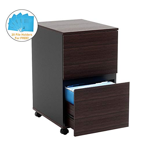 Bestier 2 Drawer File Cabinet with Wheels Office Drawer Under Desk Wood Storage Cabinet Drawer Desk Drawer Filing Cabinet P2 Wood with 20 File Holders for Free